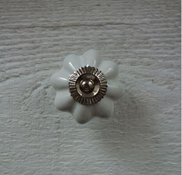 Bild von Möbelknopf Blume