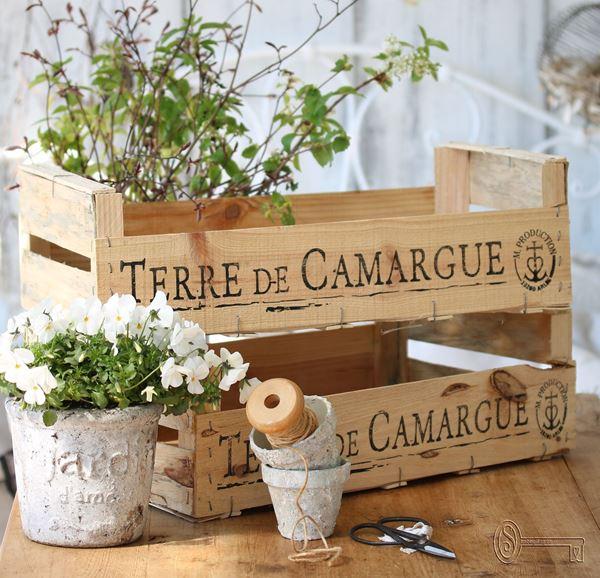 Bild von Alte Holzkiste Terre de Camargue