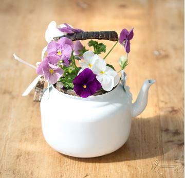 Bild von Teekrug mit Minibetonschlüssel